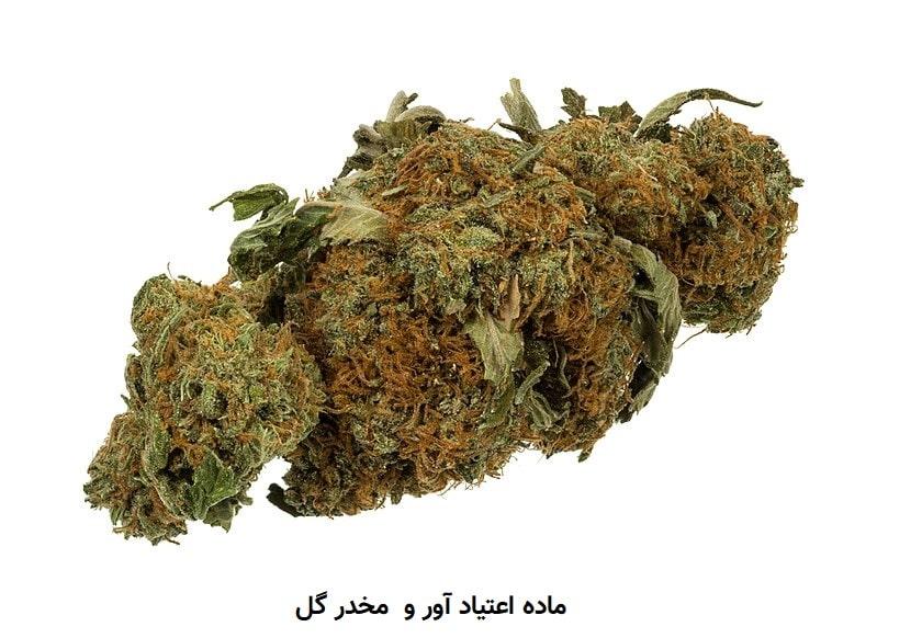 ماده مخدر گل
